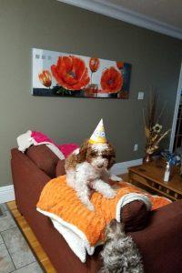 Happy Birthday Yona!